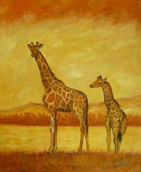 Giraffes in Yellow Savannah