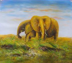 Elephants in Grassland